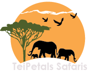 Teipetals Safaris